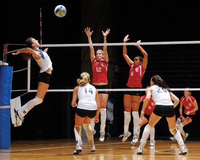 Sports Information Volleyball Sport Volleyball Coaching Volleyball Sports