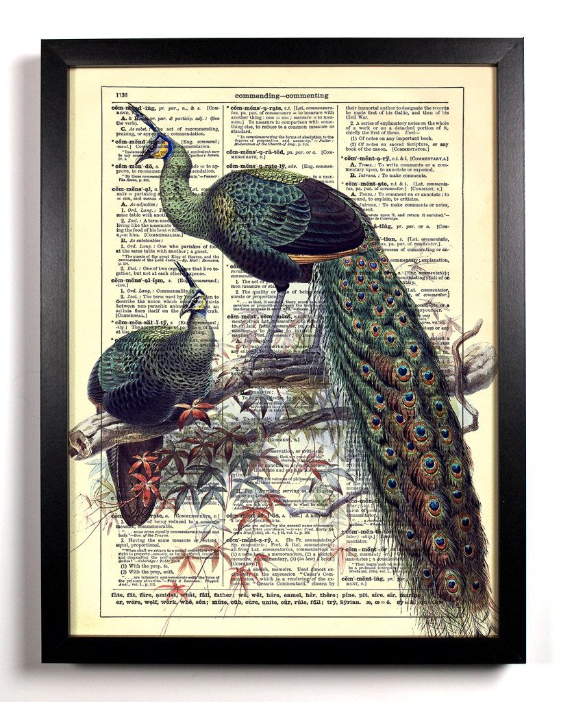 StayGoldMedia Book art, Vintage dictionary, Dictionary art