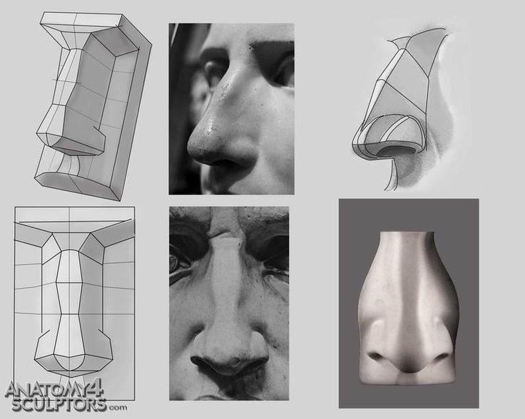 R0mesascdmeg 736588 Modelado 3d Pinterest Anatomy Nose