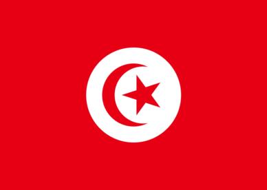 صور العلم العربي التونسي 2018 عالم الصور Chicago Cubs Logo Team Logo Sport Team Logos