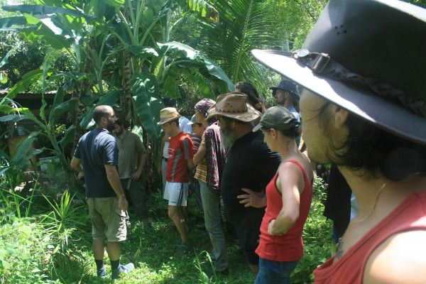Formation Permaculture A La Reunion Octobre 2014 Permaculture Formation Permaculture Tropical