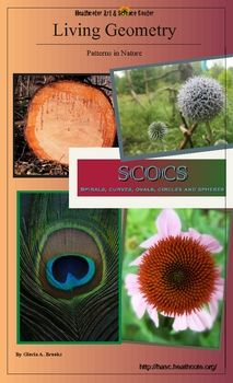 Math Art Circular Patterns In Nature Powerpoint Activities