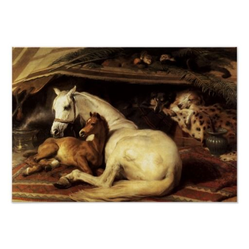 The Arab Tent With Horses And Other Animals Poster Zazzle Com