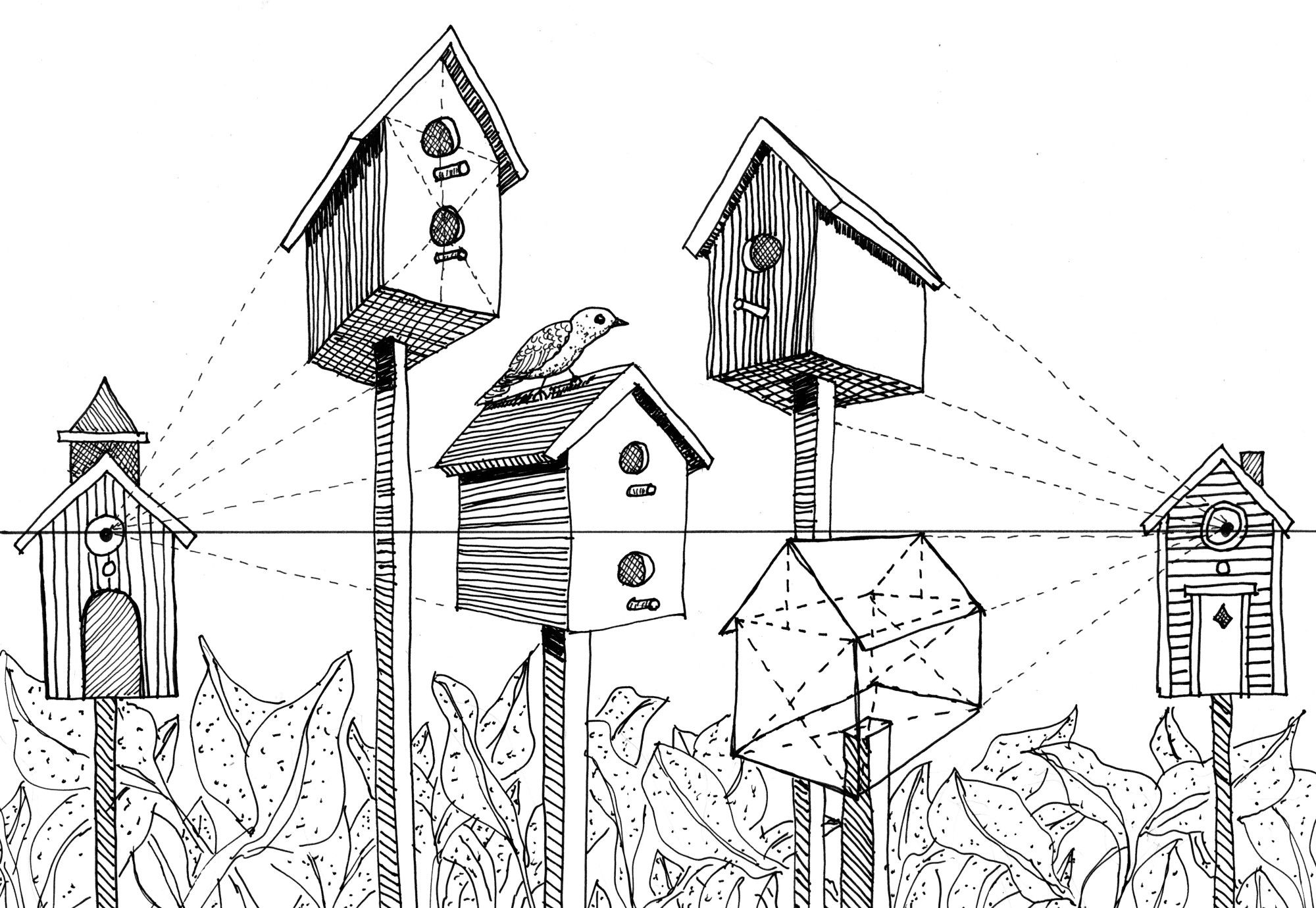 Various level bird houses to demonstrate how height changes angle of perspective