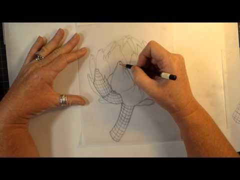 Video tips drawing with pencil botanical art artists