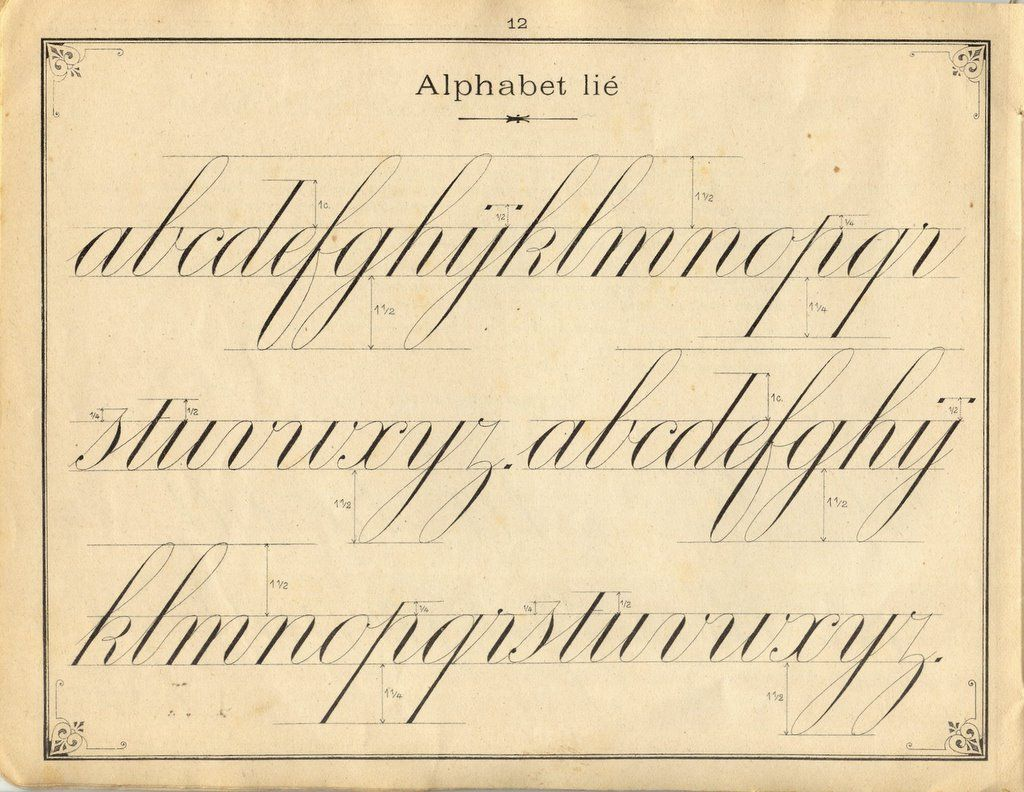 French penmanship: lower case letters. Fine, I like cursive and good ...