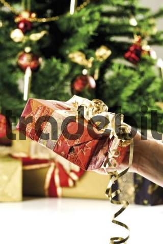 Hand holding a wrapped present in front of a decorated Christmas tree