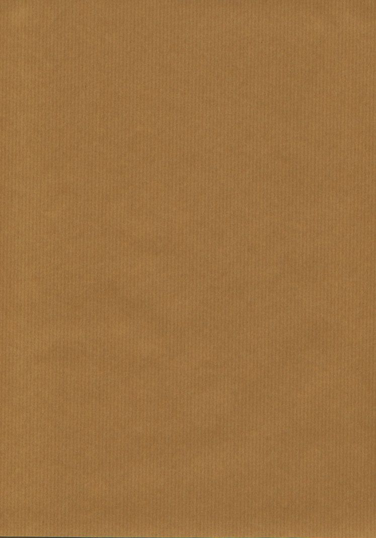 KRAFT PAPER TEXTURE By Louboumian