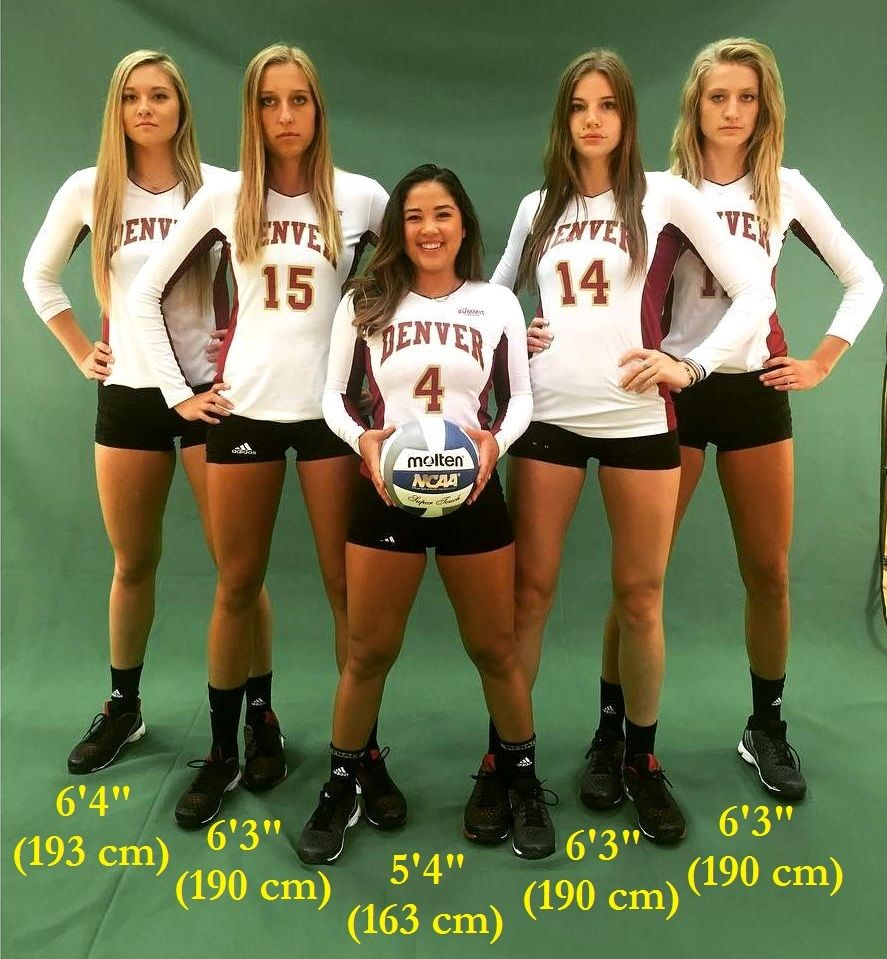 Denver S Volleyball Team By Zaratustraelsabio On Deviantart In 2020 Volleyball Team Volleyball Tall People