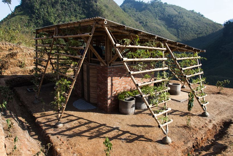 1000+ images about BAMBOO on Pinterest   Bamboo architecture ...