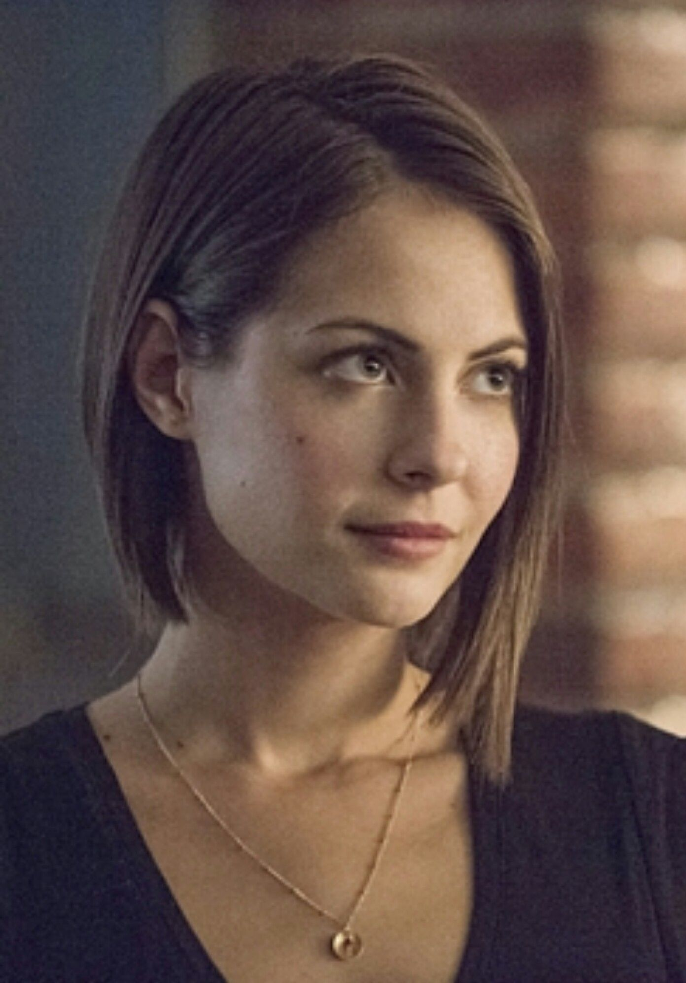 Pin By Christina Wells On Hair Pinterest Willa Holland