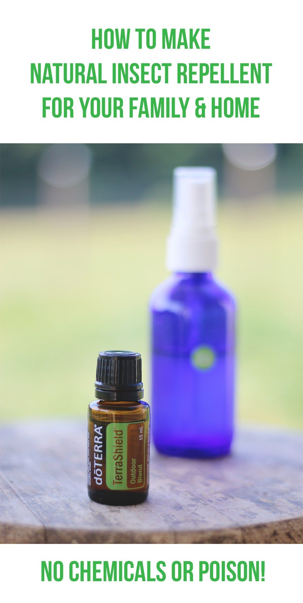 How to Make Natural Insect Repellent Natural insect