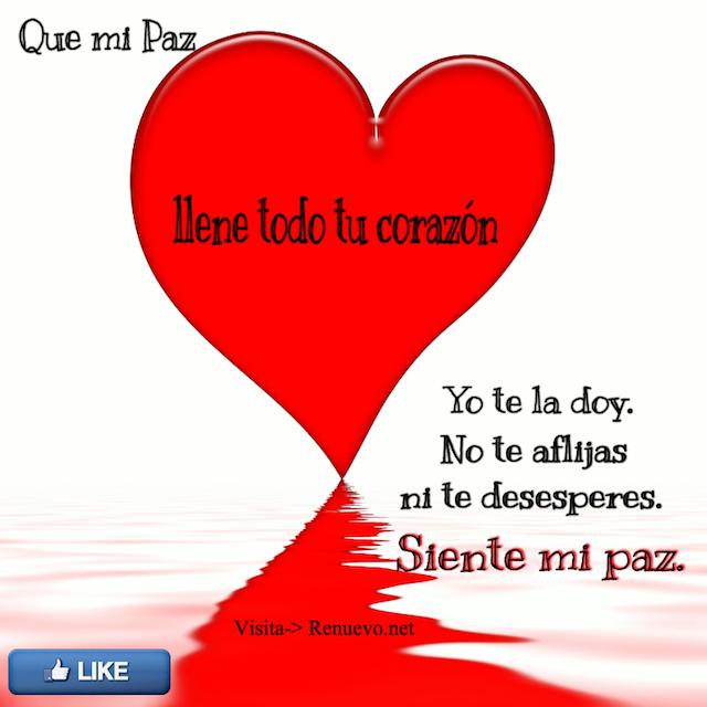 Mi Paz Yo Te La Doy Renuevo De Plenitud Citas La Paz De Dios