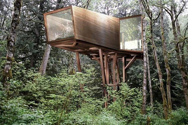 V house la casa sull albero di lusso che rispetta l ambiente wired
