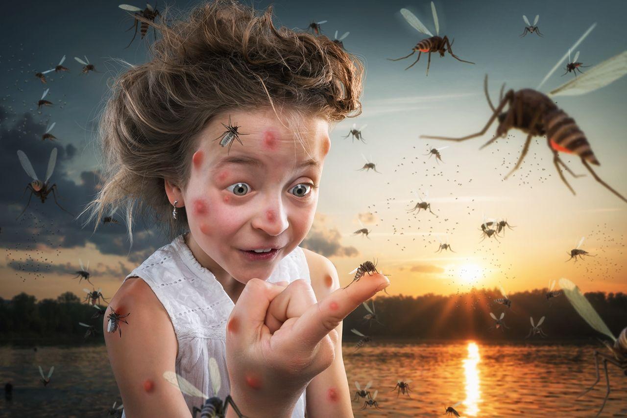 Дети и насекомые картинки