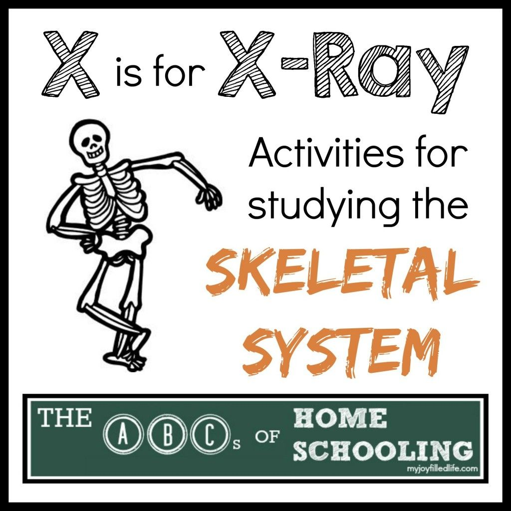 Activities For Learning About The Skeletal System
