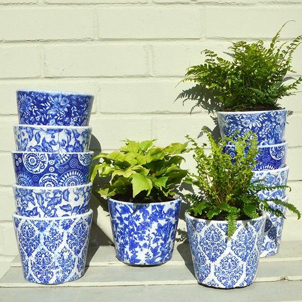 Blue Dutch Plant Pots Set Of 3 White Plants White Planters Potted Plants