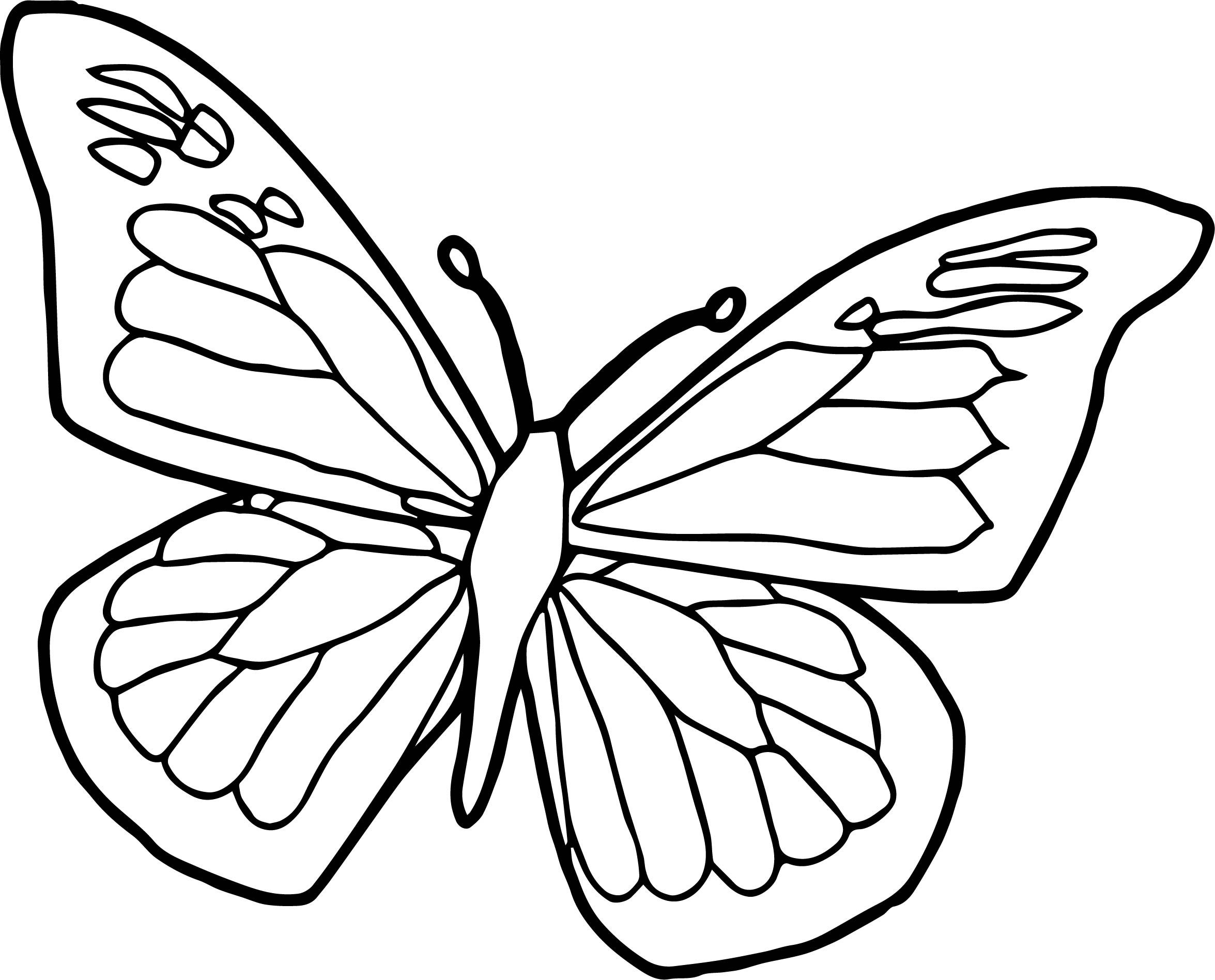 cool Blue Black Butterfly Coloring Page Butterfly