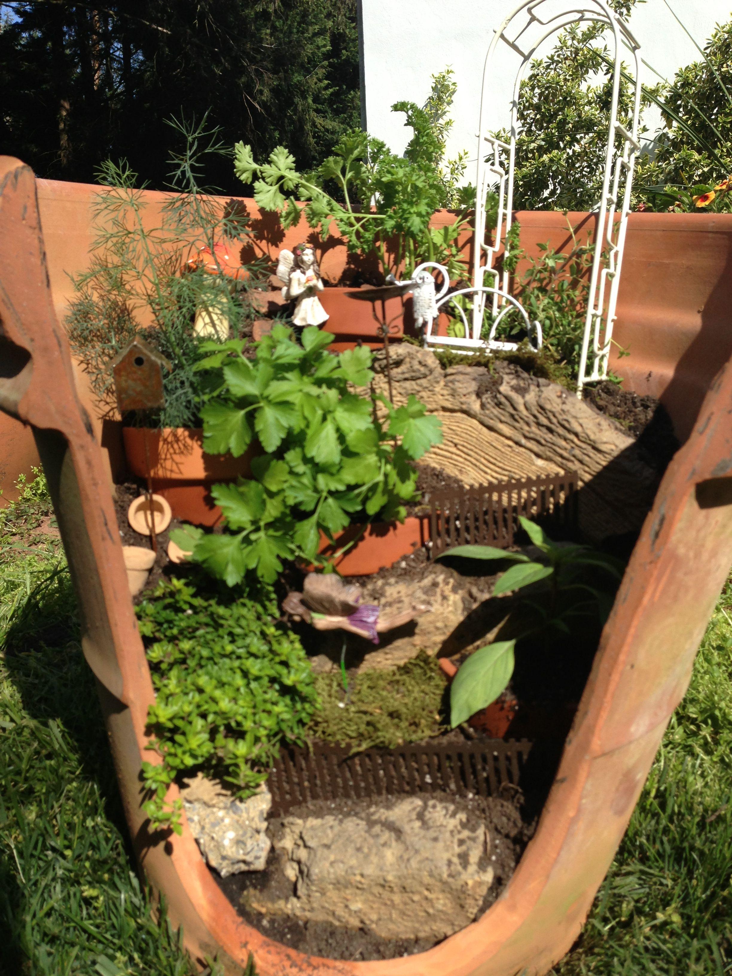 My Attempt At A Broken Clay Pot Herb Garden Herb Garden Pots