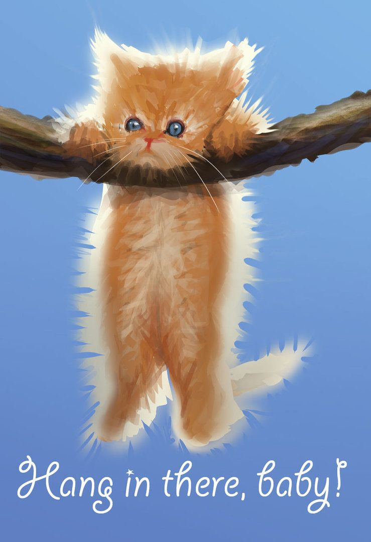 Hang In There Baby By Dinmoney On Deviantart Hang In There Baby Baby Cats Hang In There Cat