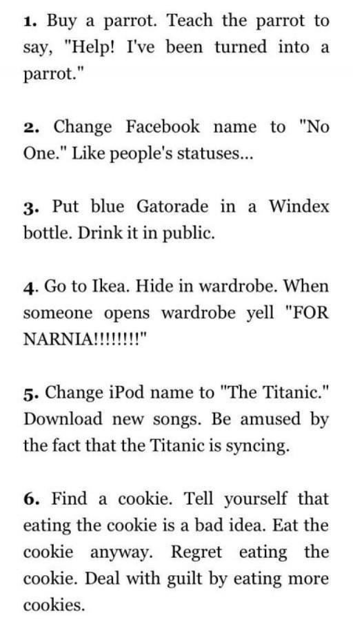 f5b5201db How to annoy people. | Random | Funny bucket list, Funny, Funny memes