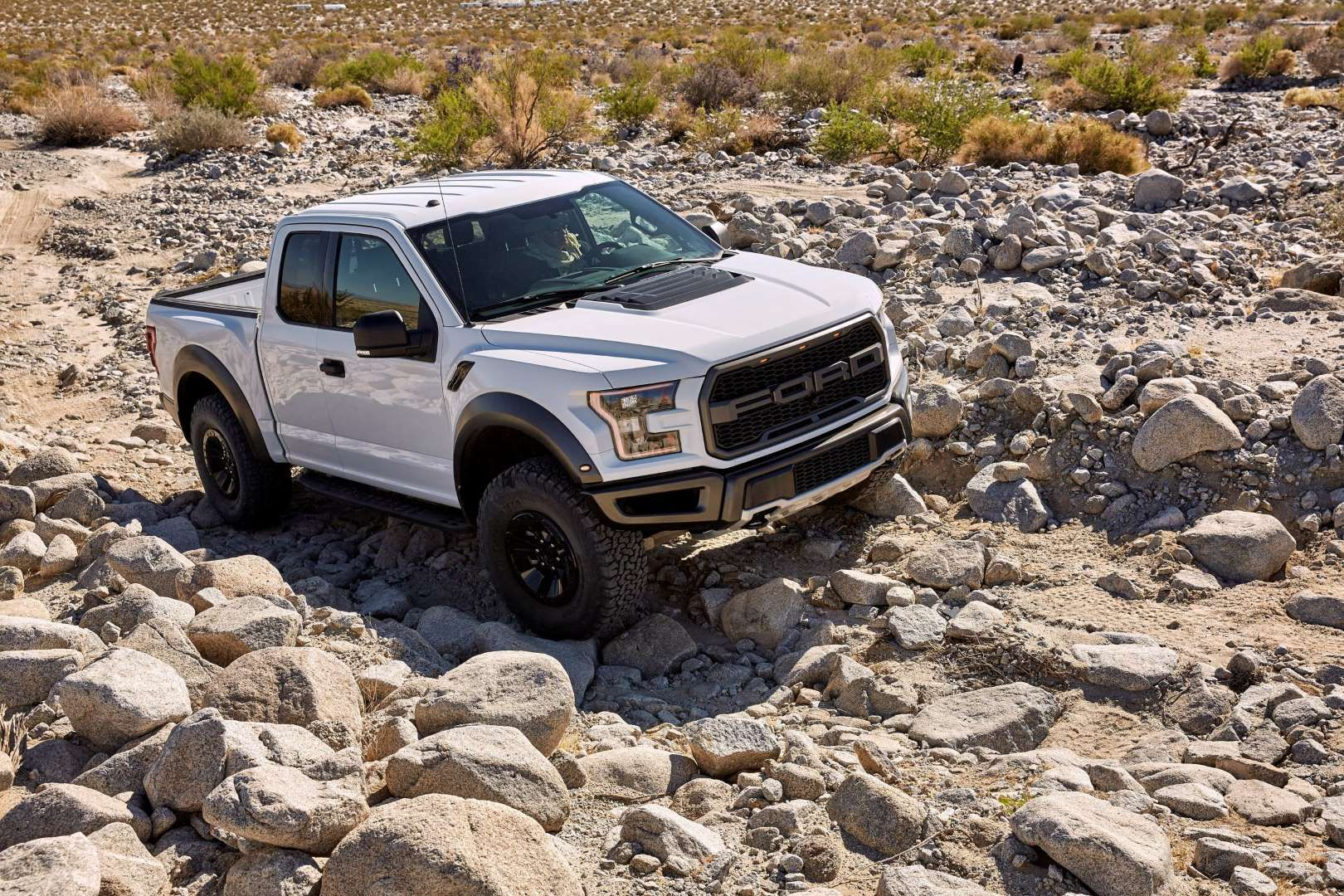 The 2017 Ford Raptor The F 150 In Beast Mode Pinterest Ford