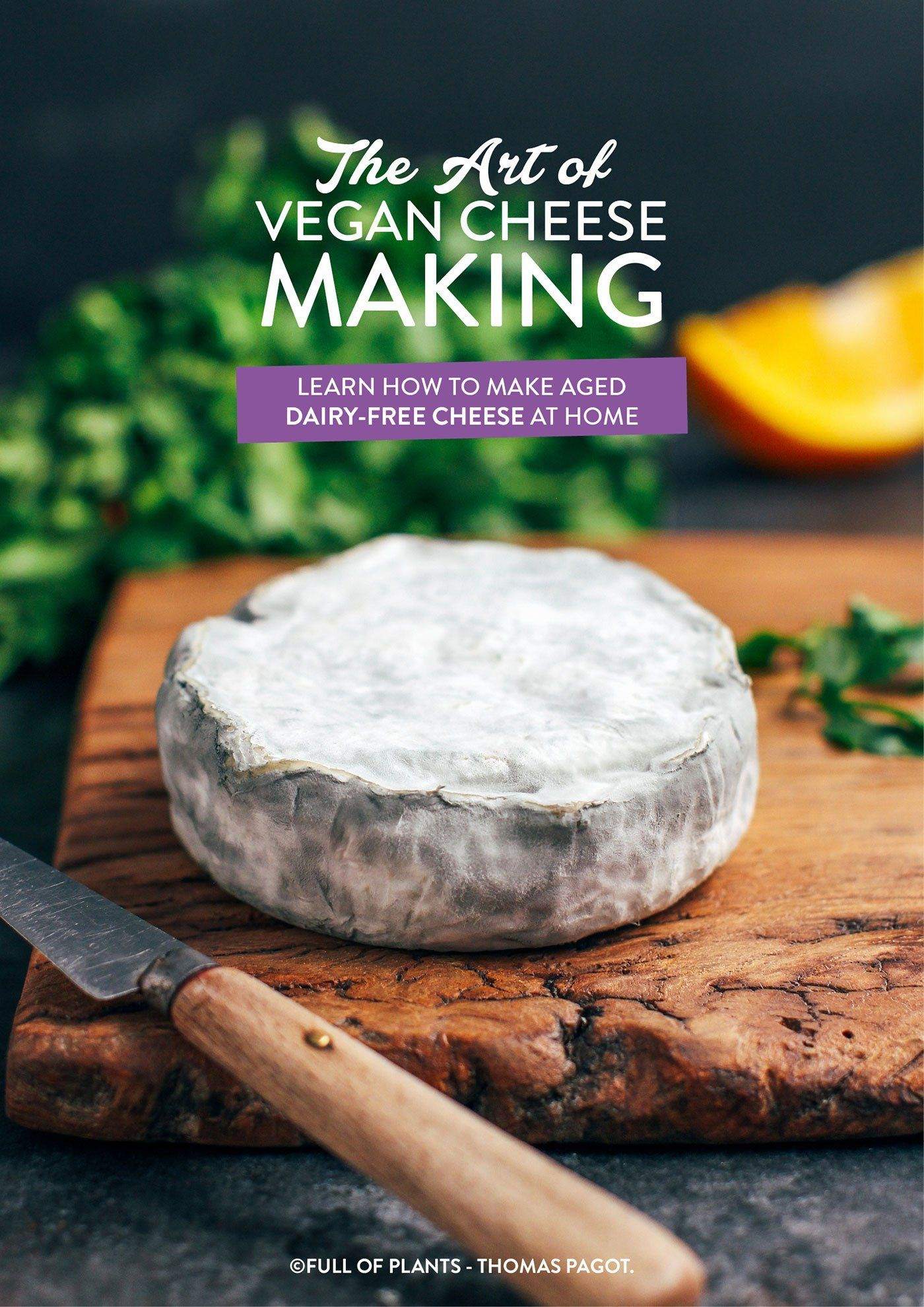 The Art Of Vegan Cheese Making Free Ebook Now Available Full Of Plants Vegan Cheese How To Make Cheese Best Vegan Cheese