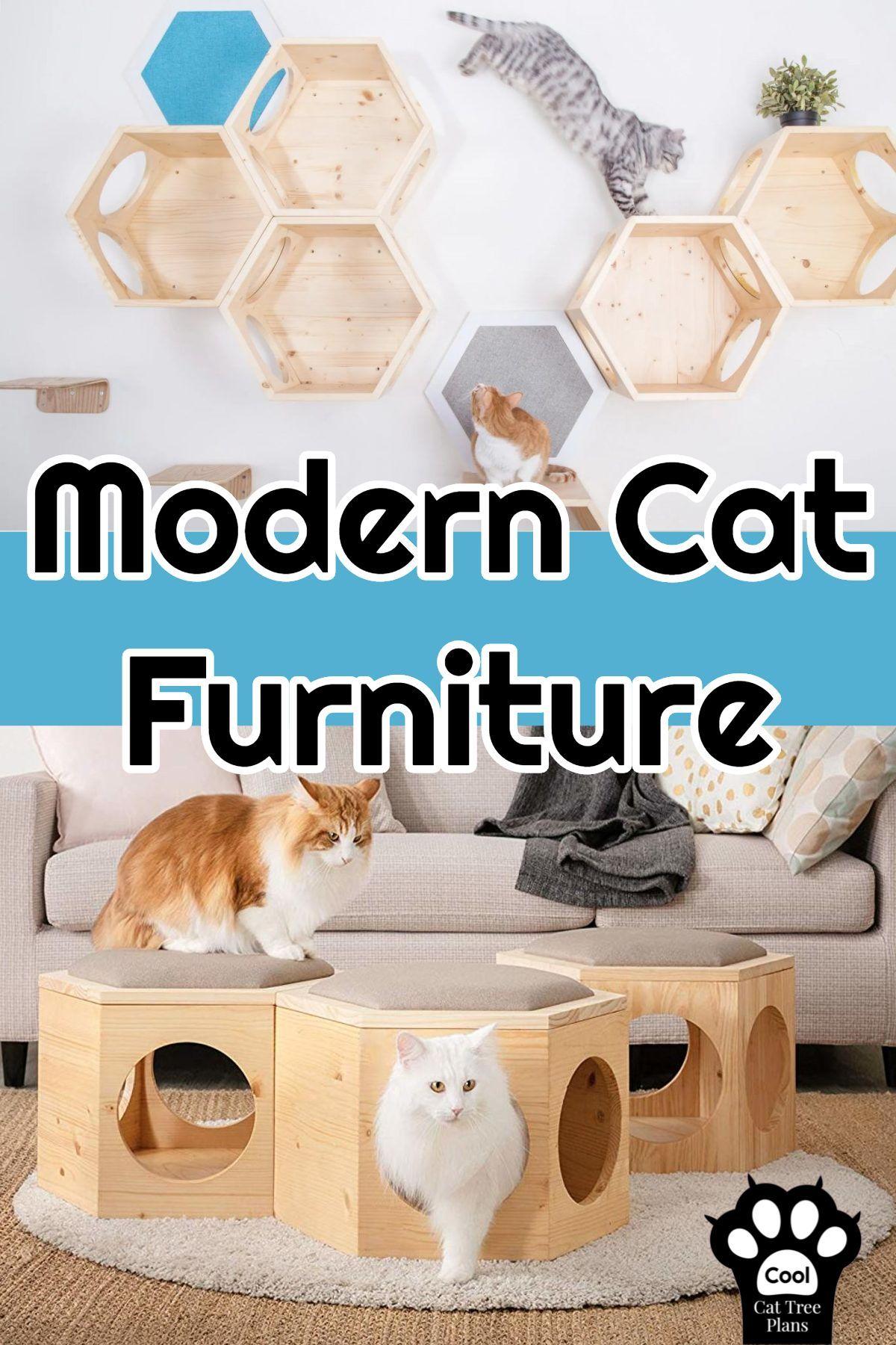 Myzoo Cat Furniture Cool Cat Tree Plans Cat Tree Plans Cool Cat Trees Cat Furniture