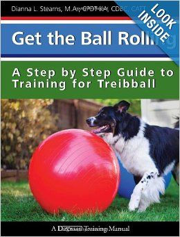 Get The Ball Rolling A Step By Step Guide To Training For