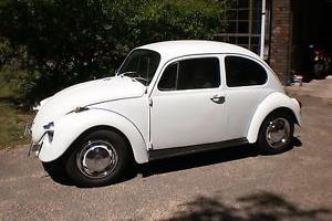 volkswagen 1500 beetle 1969 2d sedan 4 sp manual 1 5l carb in sydney rh pinterest com 1960 VW Beetle VW Bug