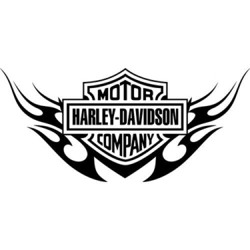 2 x HARLEY DAVIDSON style Tank SKULL decal sticker  ** CHROME **  SILVER