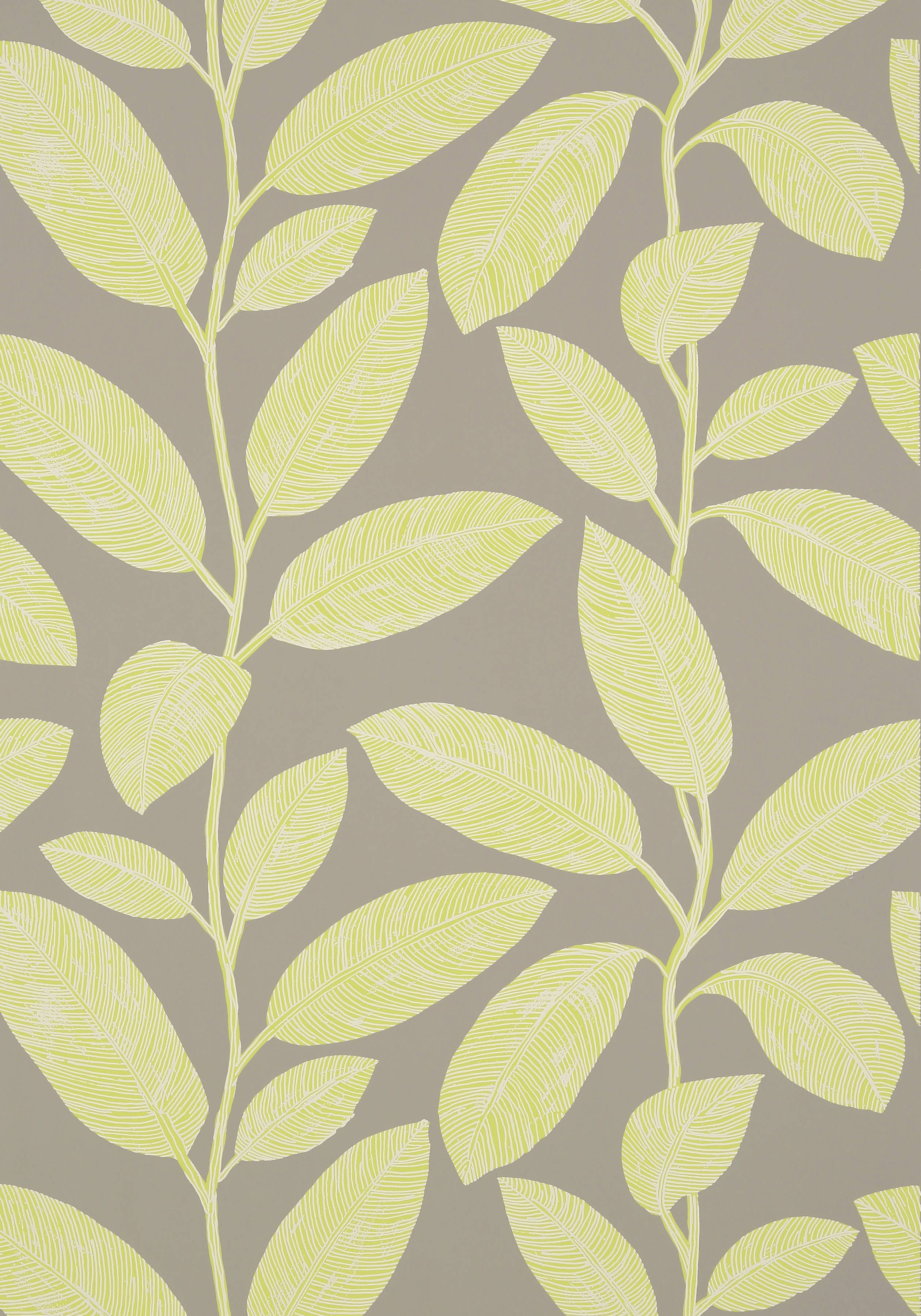 KOMODO LEAVES, Grey and Green, T5713, Collection Biscayne from Thibaut