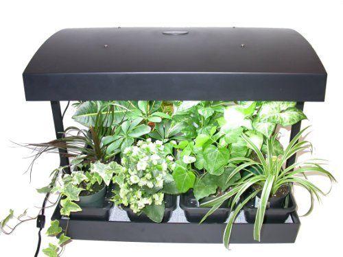 Future Harvest Development Sun Blaster Grow Light Garden 400 x 300
