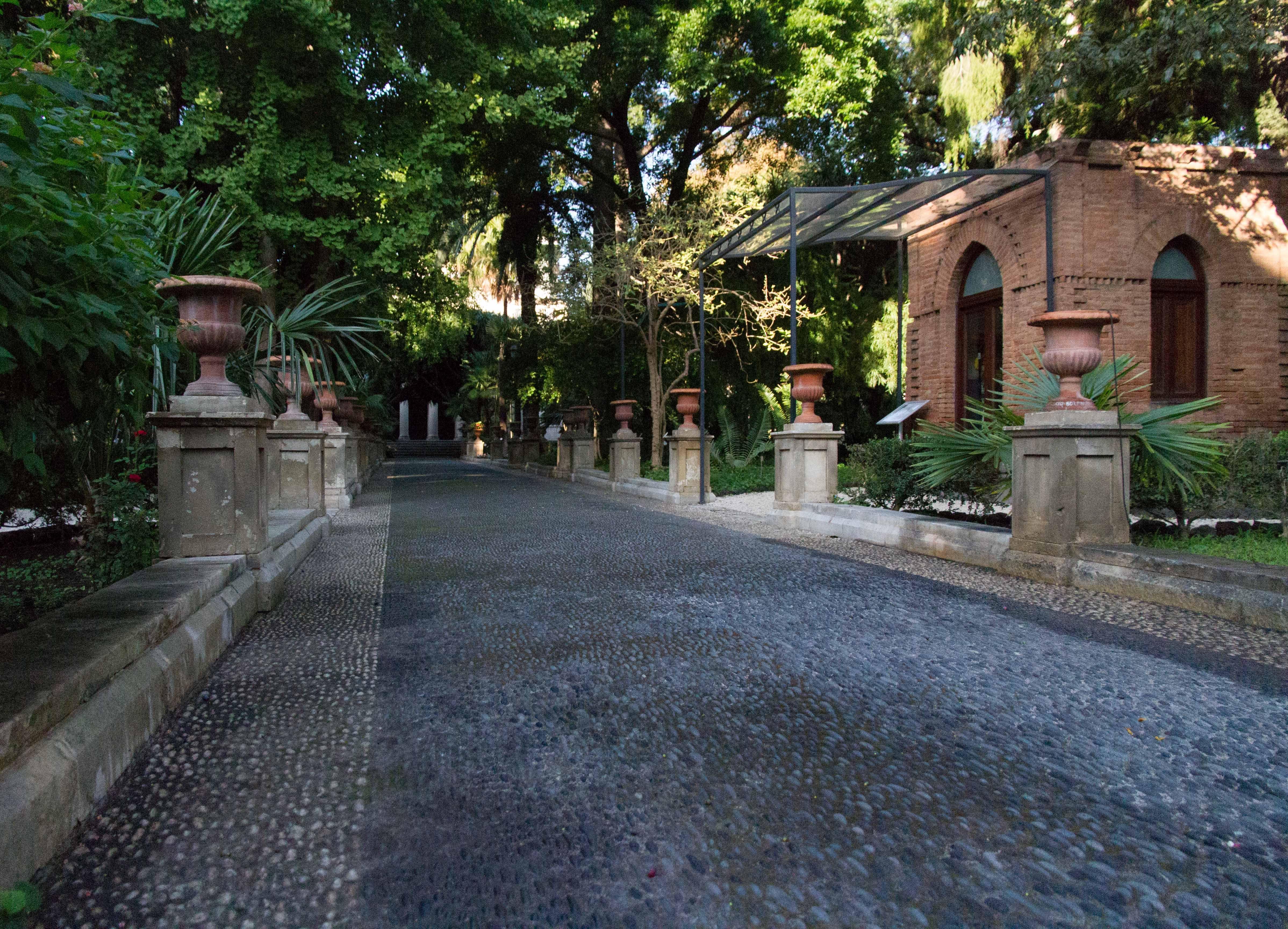 orto botanico di catania sicilia