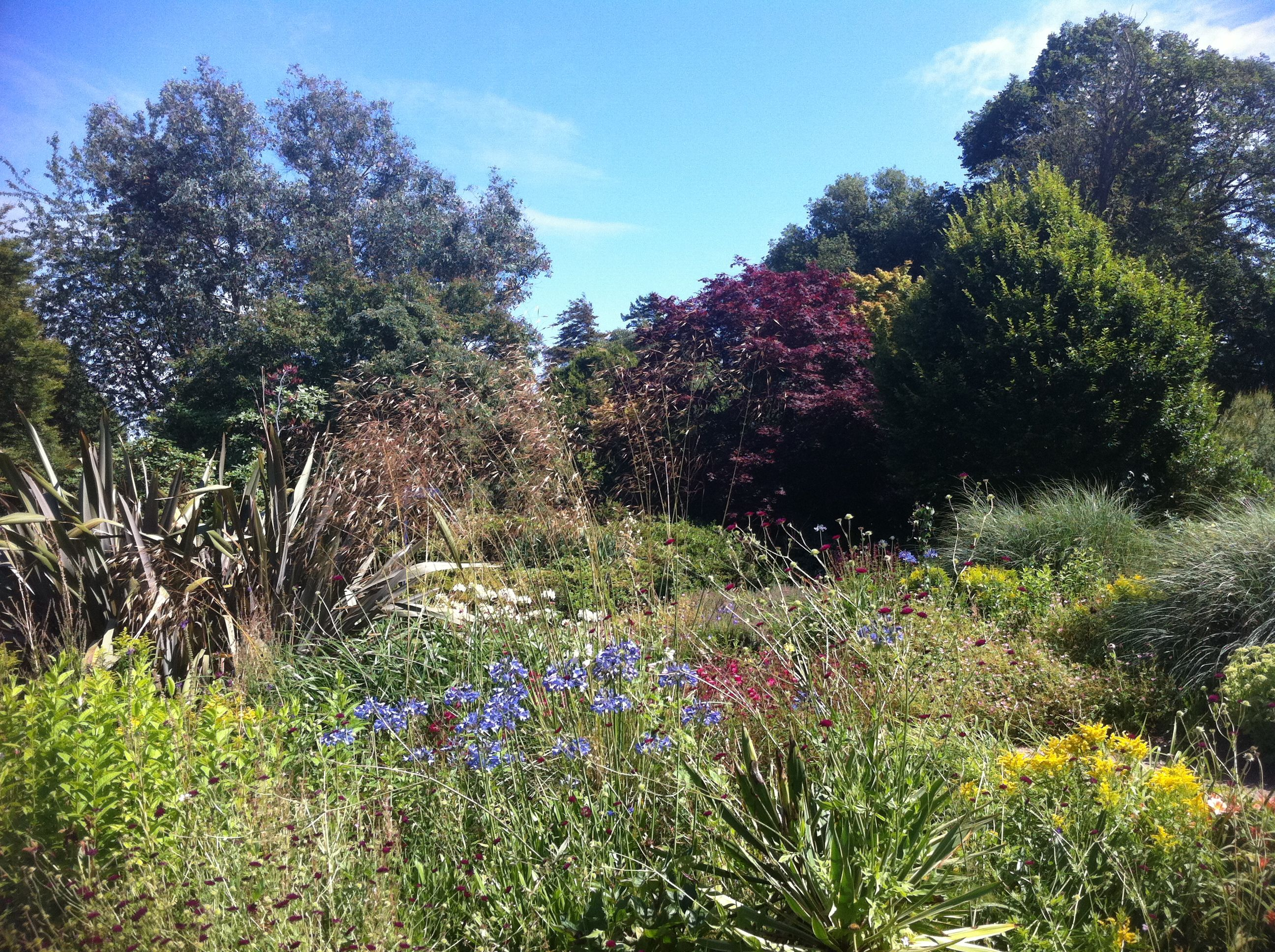 The beautiful Exbury Gardens, one of the stops on the New Forest Tour where you can join the Gardens' steam train through a childrens' sculptor park... they'll love it!