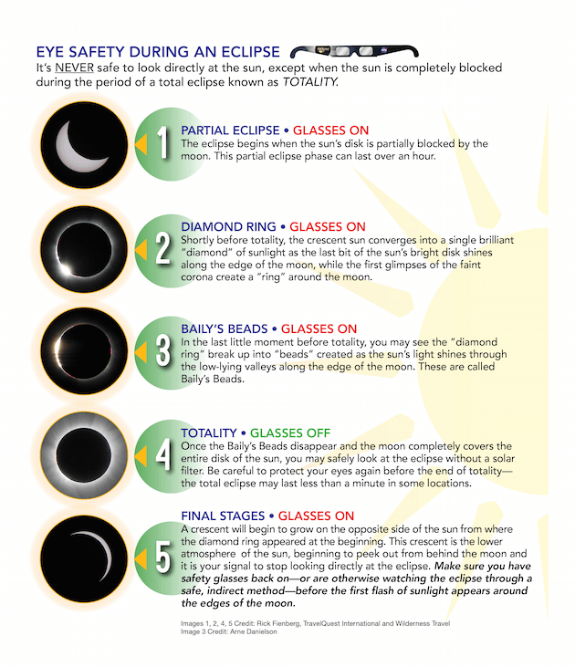 How To View The Solar Eclipse Without Damaging Your Eyes Solar Eclipse Solar Eclipse 2017 Eclipse