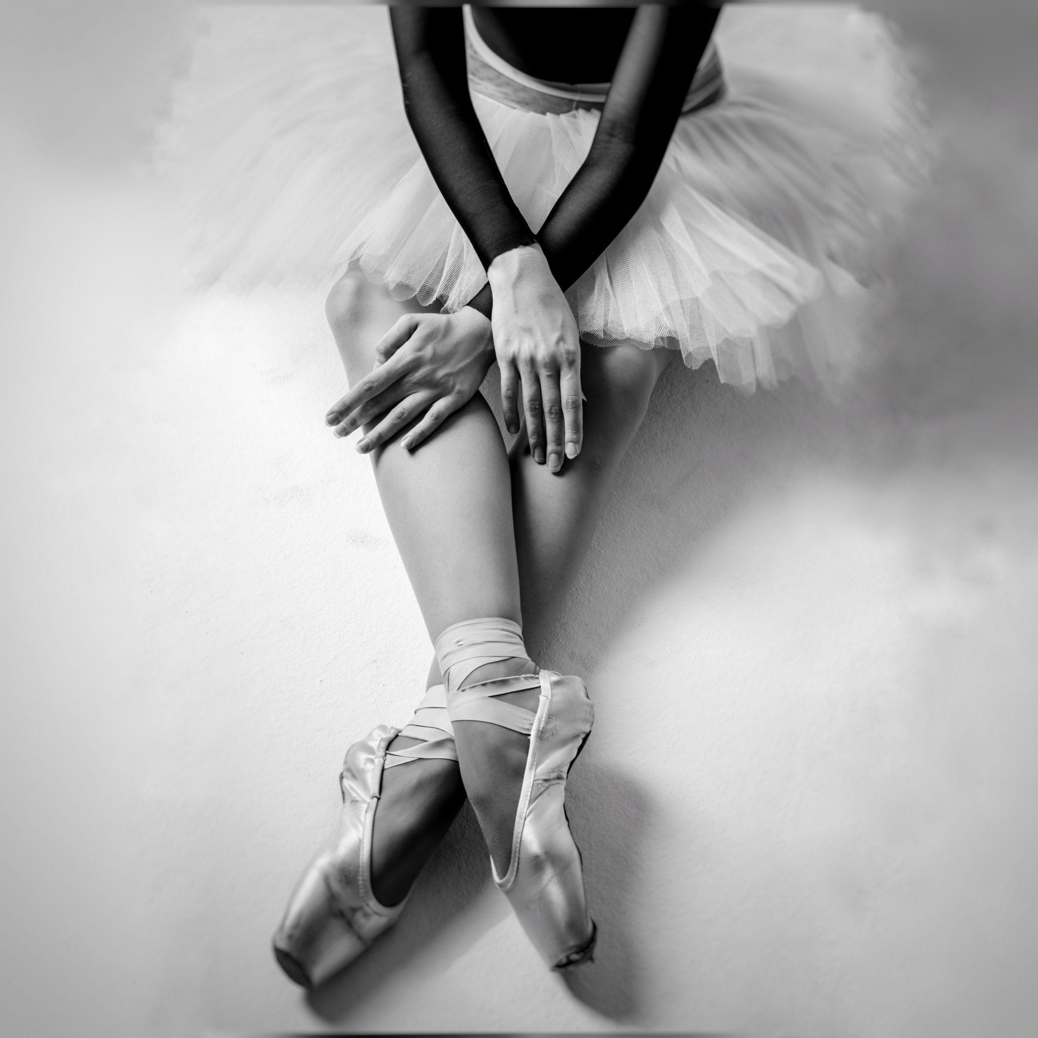 кусты балерина фотосессия идеи является