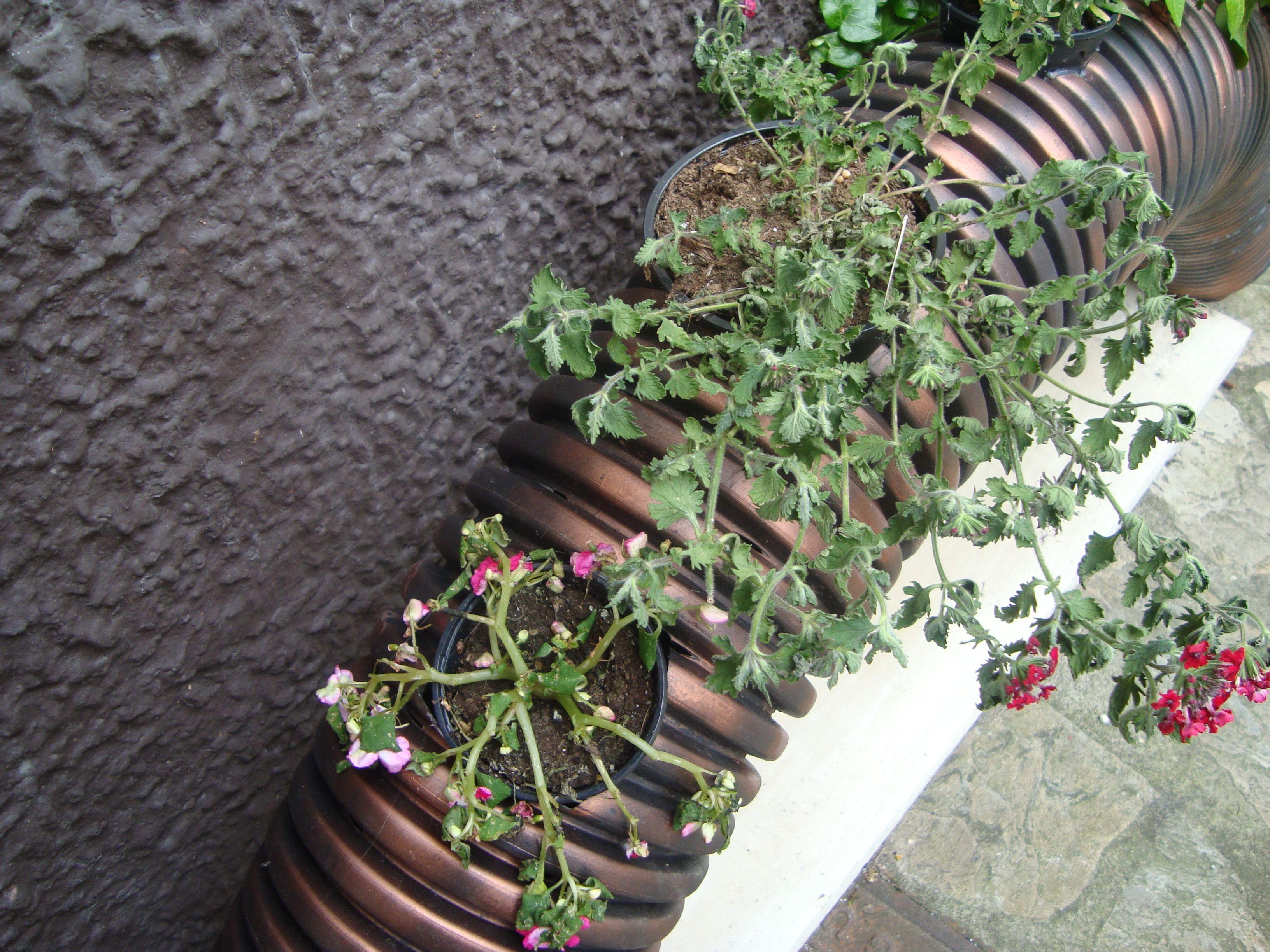 Jardines verticales con materiales reciclados buscar con for Jardines reciclados
