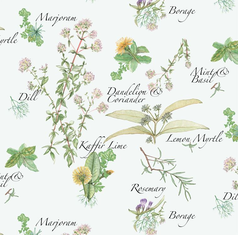 Herbs And Edible Flowers With Names