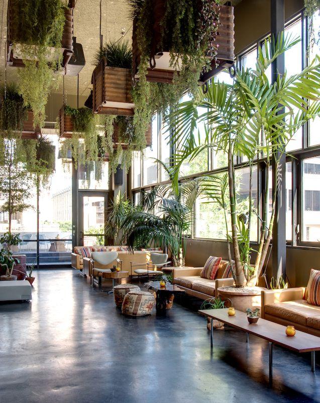 Plantenbakken aan het plafond