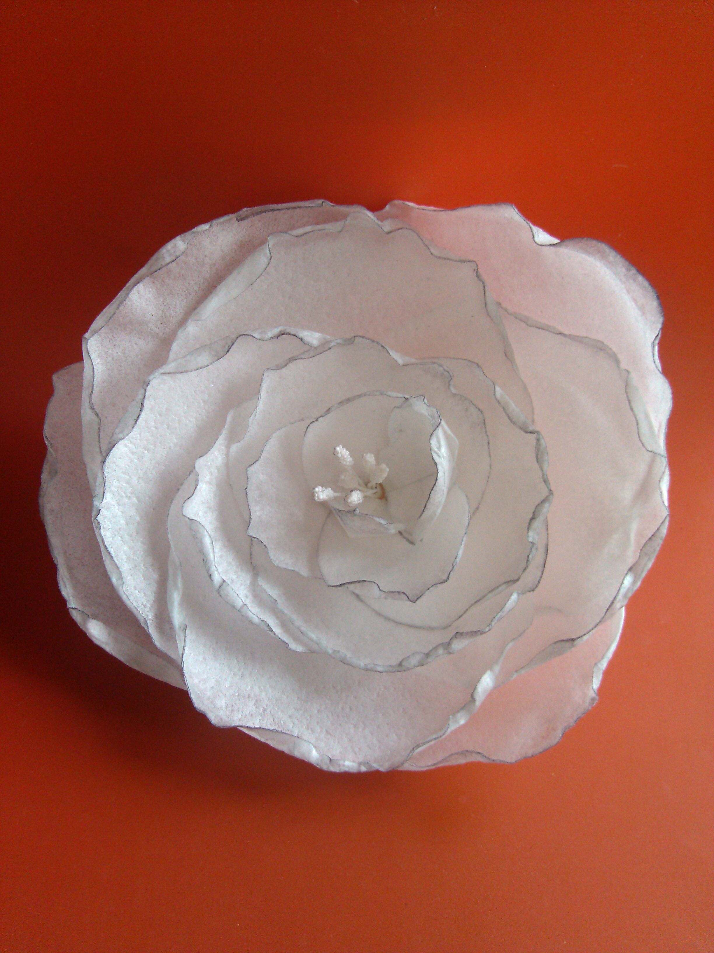 Wafer Paper Flower With A Soft Dusting Items I Made Gumpaste