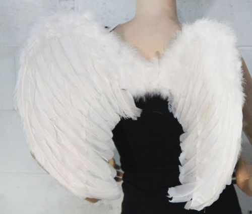 Feather Angel Wing Wings Fairy Swan Party Costume Fancy Dress Up Halloween
