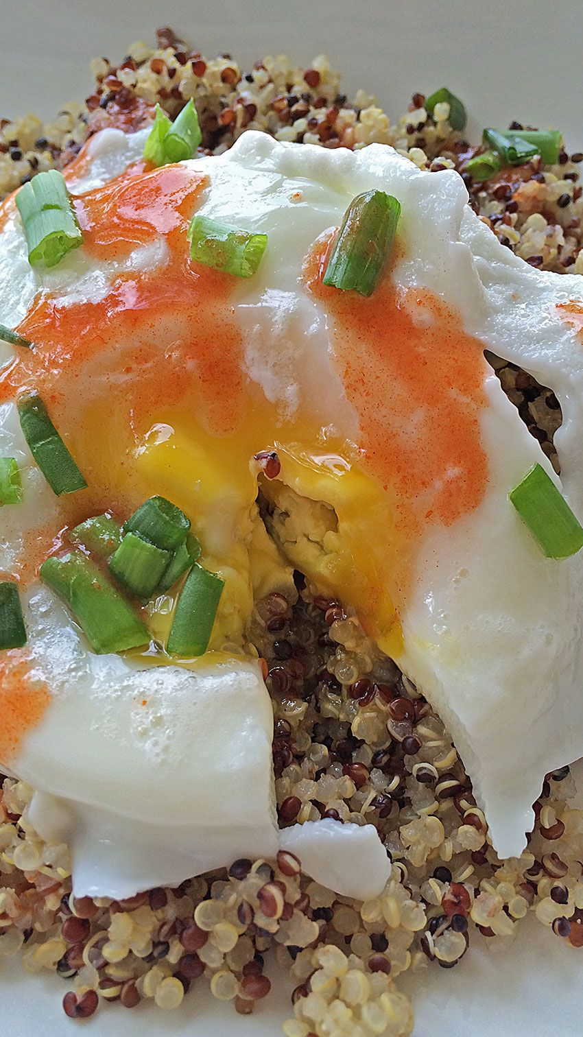 Poached egg quinoa breakfast todays moxie healthy breakfast ideas todays moxie offers recipes for foodies do it yourself craft projects and decorating ideas and other tips for being the best version of yourself solutioingenieria Image collections