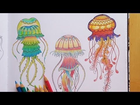 Speed Colouring Of Jellyfish Number This Picture Is From The Adult Book Lost Ocean By Johanna Basford