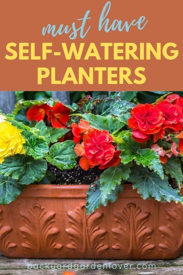 Self-Watering Planters You Must See! #selfwatering