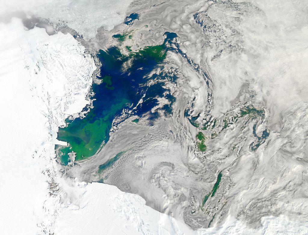 Bloom in the Ross Sea Antarctica, How to get warm
