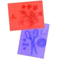 Crafting With Sun Prints | Sun prints, Prints, Decorative prints