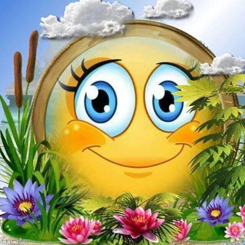 Smiley gute nacht
