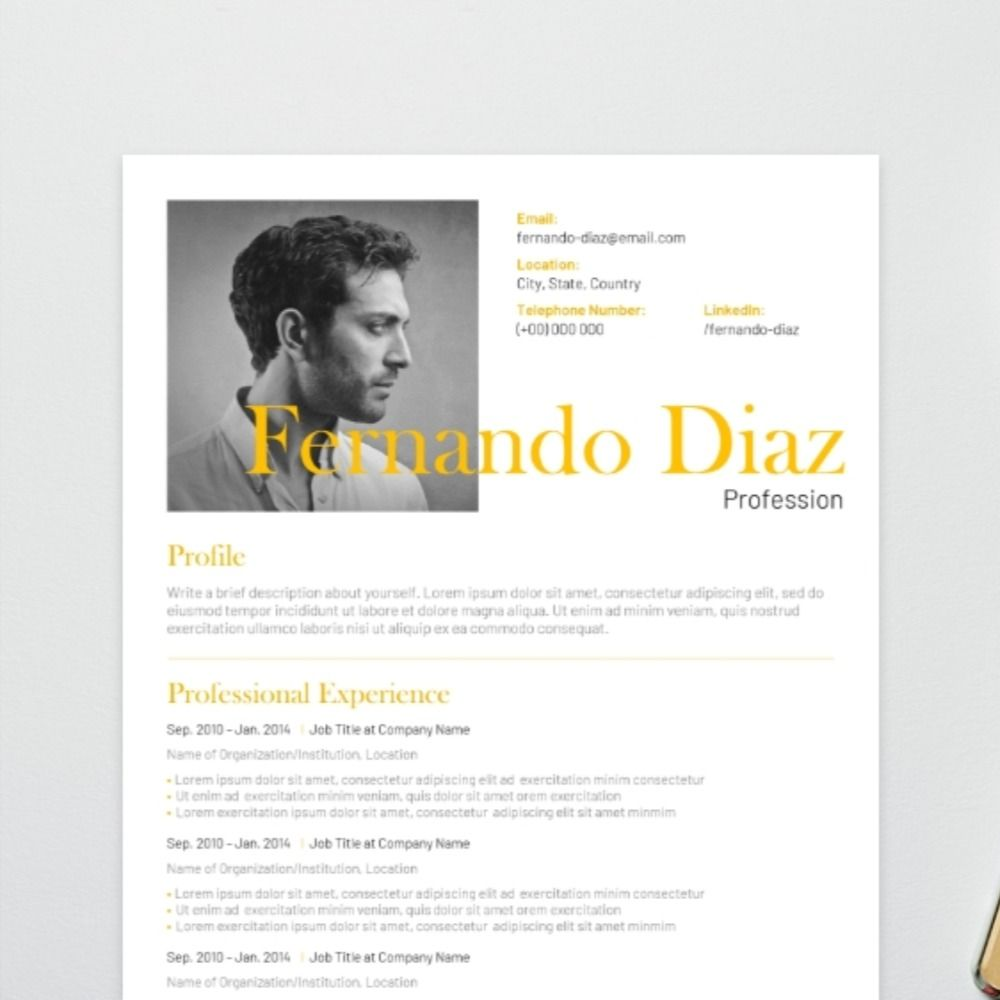 For an artistic flair, opt for this visual CV template