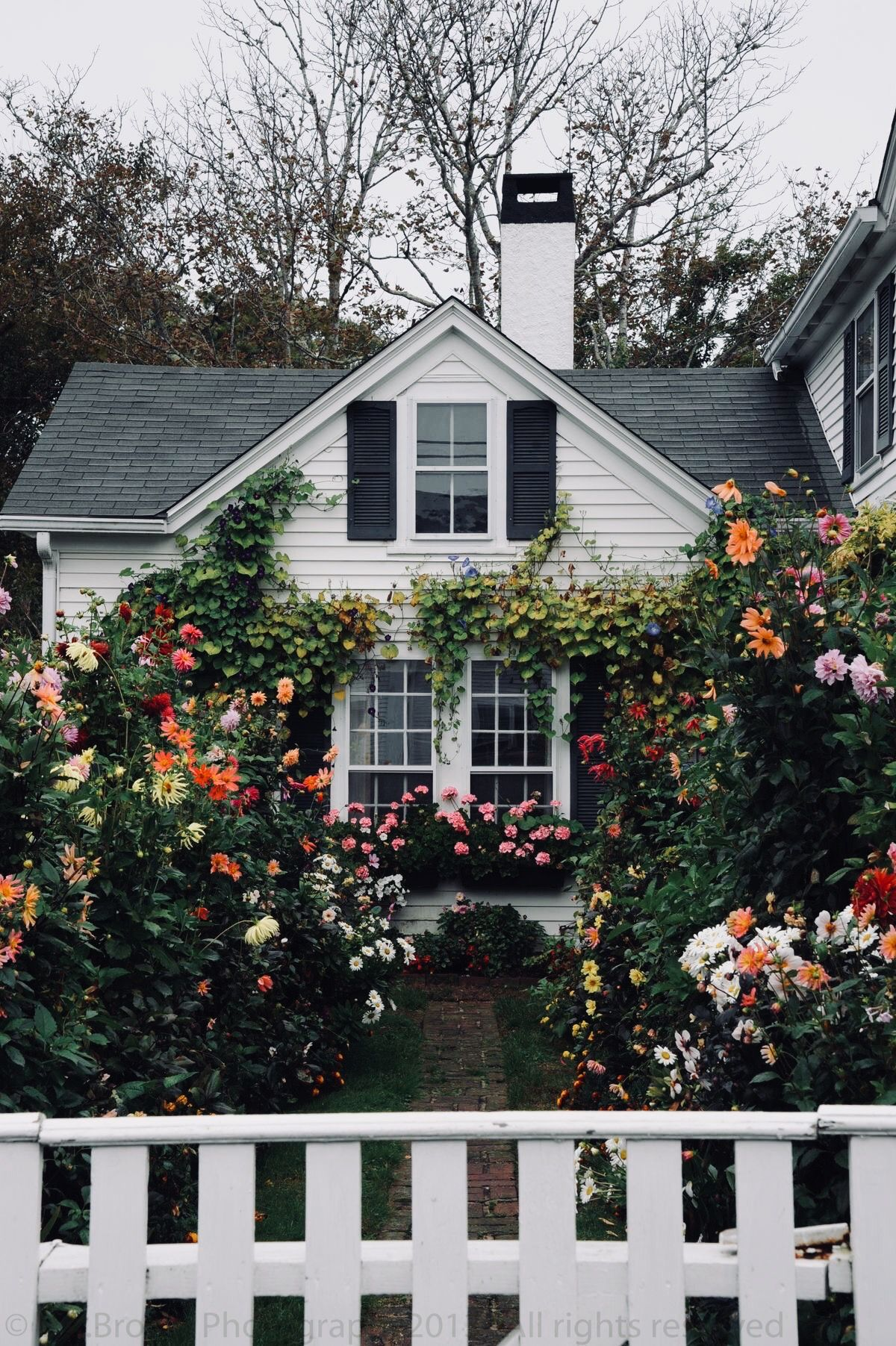 Home Julesjetsets House Exterior Cozy Cottage Cottage Homes